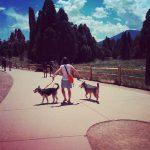 Road Trip | Aspen | Claire Dunaway Studios