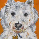 Pet Portrait   Jacob   Claire Dunaway Studios