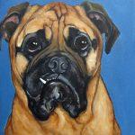 Pet Portrait   Jake   Claire Dunaway Studios