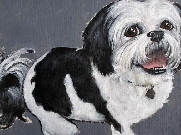 Pet Portrait Testimonial | Sophie